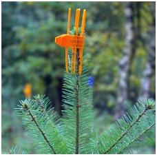Ūglio apsauga Cactus Orange