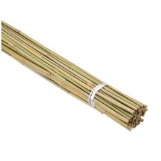 Bambukas 1,50 m (10-12 mm)