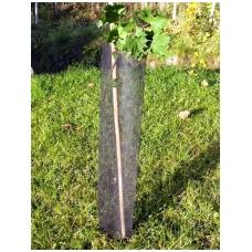 Medelių apsauga TREE GUARD 3x3 mm 1,20 m