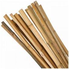 Bambukas 2,10 m (16-18 mm)