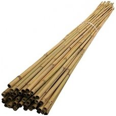Bambukinis kuolas 150 cm (22-24 mm)