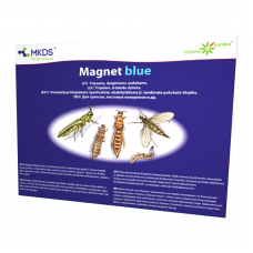 Magnet Blue-tripsų,daiginių uodelių gaudyklė 20*25