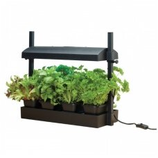 Micro Grow Light Garden daigykla 11 W juoda