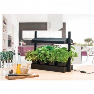 Micro Grow Light Garden daigykla 11 W juoda 2