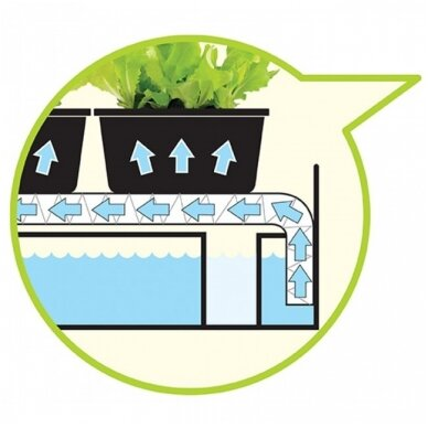 Micro Grow Light Garden daigykla 11 W juoda 4